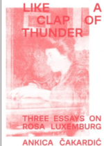 Book Cover: Like a Clap of Thunder